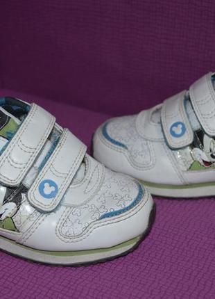 Модные кроссовки adidas , оригинал