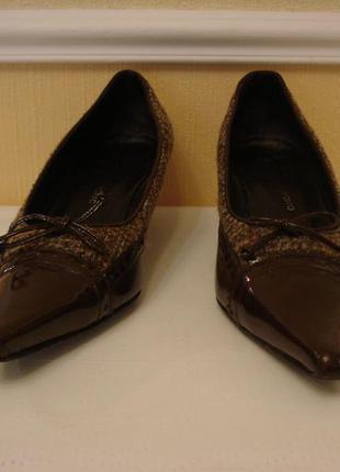 Лаковые туфли лодочки с острым носком на небольшом каблучке бр...