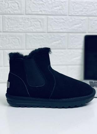Низкие угги на резинках угги ботинки ugg сапоги на высокий под...