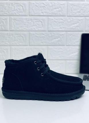 Мужские ботинки ugg на шнуровке угги на шнурках сапоги низкие ugg