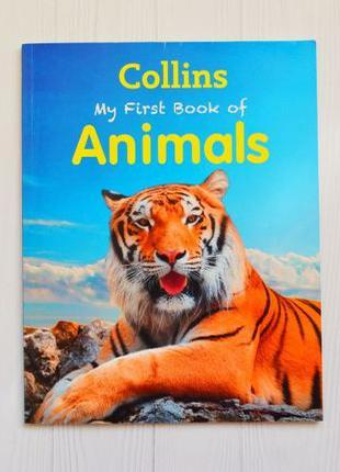 Детская книга на английском энциклопедия животные