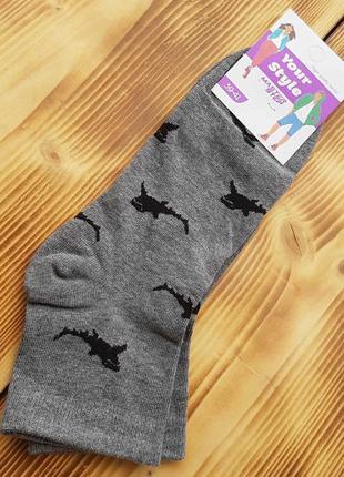 """Носки молодежные """"акула"""", размер 39-41"""