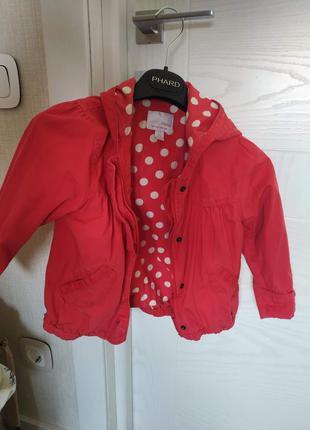 Ветровка на девочку 3-4 года, куртка в подарок