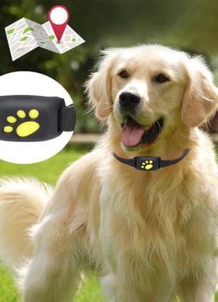Ошейник с gps трекер для животных собак мини Seuno Z8 чип мак