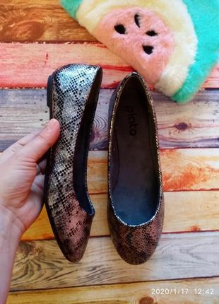 Змеиный принт 🐍 туфли/балетки plato