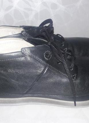 Ecco - шкіряні черевики