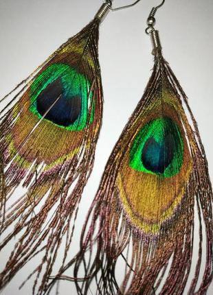 Серьги перья павлин