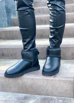 Шикарные женские кожаные сапоги ugg mini в черном цвете /осень...