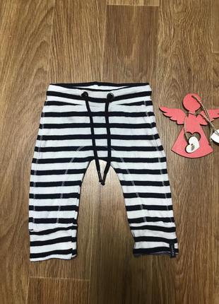 Штаны брюки в полоску