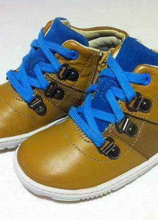 Kожаные демисезонные ботинки  clarks размер 22,5 по стельке 14...