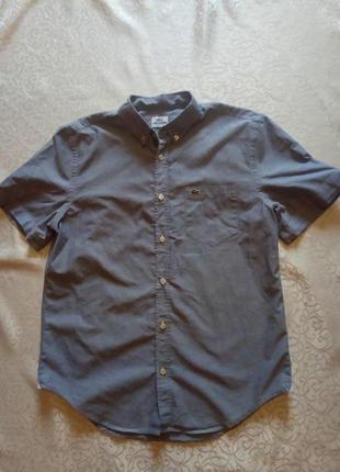Рубашка летняя lacoste