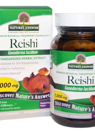 Nature's Answer, Грибы рейши (трутовик лакированный), стандарт...