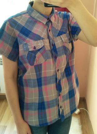 Серая рубашка в сине-розовую клетку с коротким рукавом. размер xl