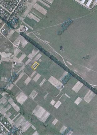 Участок земли в пгт. Макаров, Киевская обл., 0.15 Га