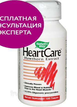 Nature's Way, HeartCare, стандартизированный боярышник, 120 шт...