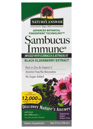 Nature's Answer, Sambucus Immune, настой эхинацеи и астрагала,...