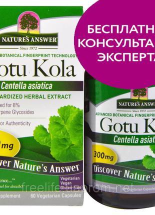 Nature's Answer, Центелла азиатская, поддержка здорового иммун...