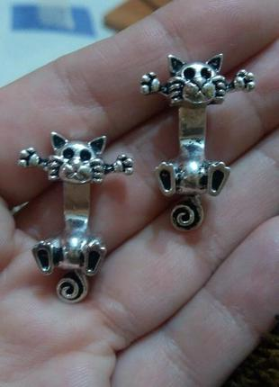 Распродажа!серьги гвоздики котики кот коты