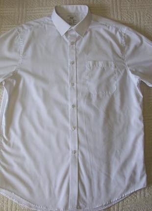 Белая мужская рубашка с коротким рукавом