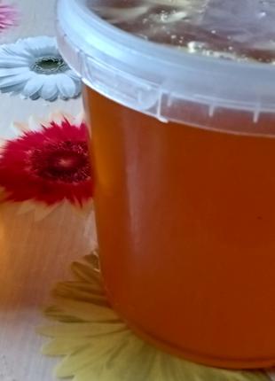 Продам соняшниковий Мёд