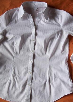 Белая блуза рубашка классика