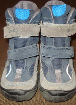 """Детские мембранные зимние ботинки фирмы """"ecco"""""""