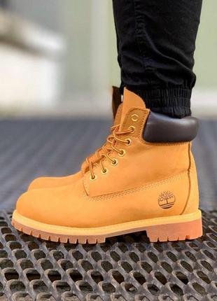 Ботинк мужские/женские timberland 6 inch premium boot (осінь/з...