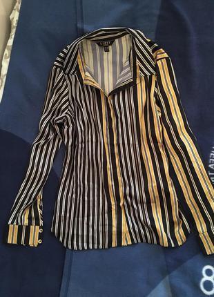 Блуза рубашка в полоску вертикальную стильная новая