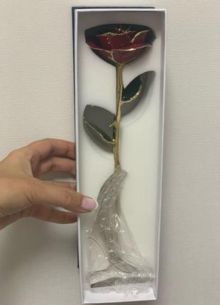 Роза на долгую память
