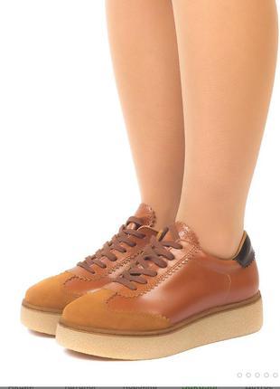 Кожаные эксклюзивные ботинки carlo pazolini