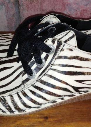 Кожаные туфли clarks, зебра, 40р
