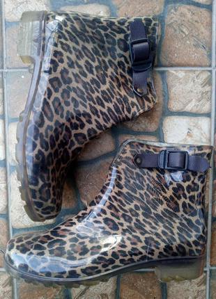 Гумові чоботи, резиновие сапоги