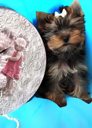 Кукольная мини девочка на мягкую подушку