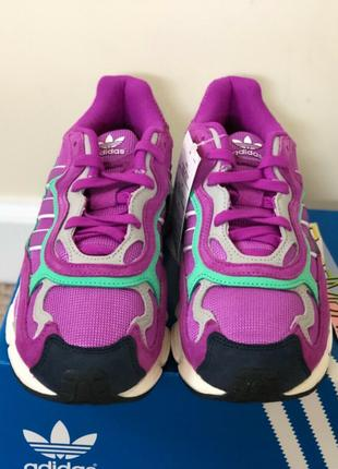 Adidas Temper Run Shock Purple