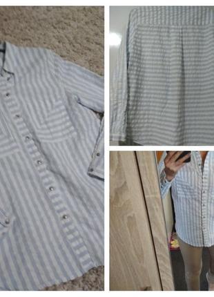 Стильная рубашка ,полоса, катон, edc, p. m
