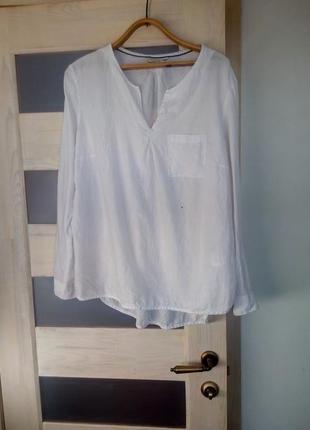 Коттон белая базовая рубашка