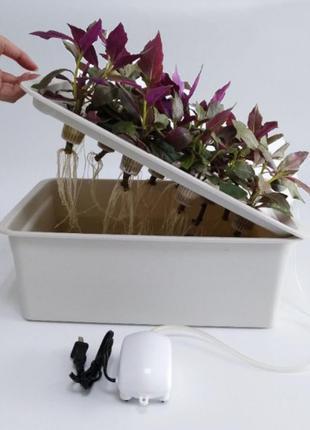 Гроубокс гидропоника для выращивание зелени