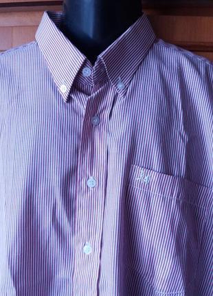 Мужская рубашка в полоску на длинный рукав xхxl