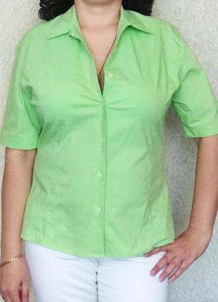 Рубашка с коротким рукавом италия,  xl