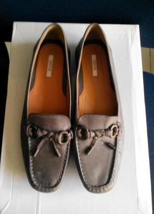 Жіночі шкіряні фірмові туфлі