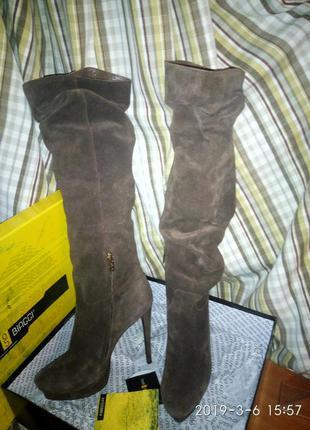 Ботфорты, высокие замшевые сапоги на каблуках antonio biaggi