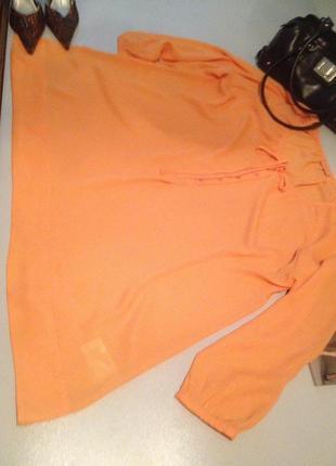 Блуза большого размера.1072