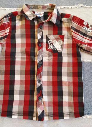 Рубашка сорочка мальчик 110 topolino
