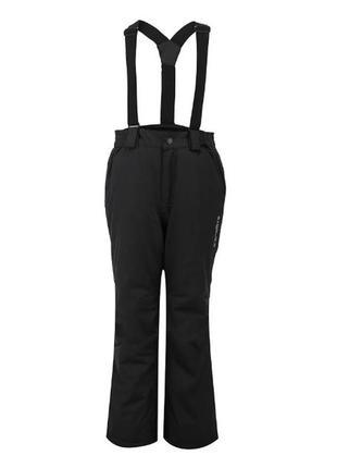 Лыжные утепленные штаны
