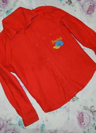 Рубашка красная детская на мальчика 5-6 лет