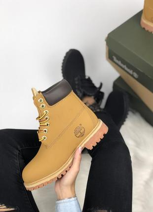 Шикарные ботинки тимберленд  на меху