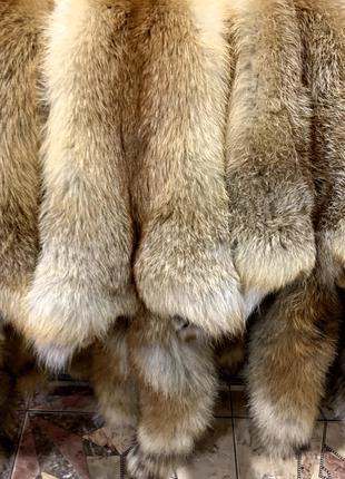 Шкура лисы