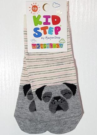 """Детские носки в полоску """"мопс"""" размер 14см / 1-2 года"""