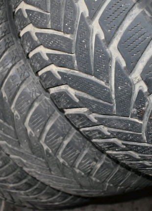Dunlop SP Winter Sport M (5мм) 205/55 R16