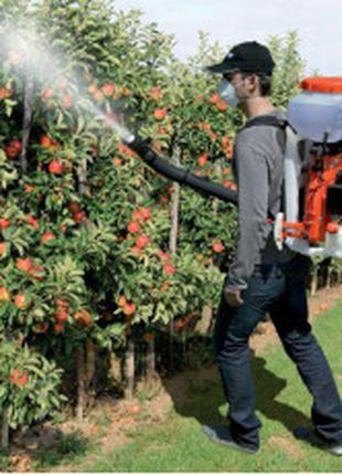 Обработка садовых растений от вредителей и заболеваний.